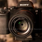 , Sony ZEISS Sonnar T* FE 55mm f/1.8 ZA on A7